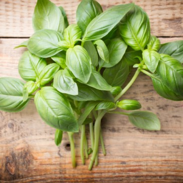 10 Delicious Ways to Use a Bunch of Basil